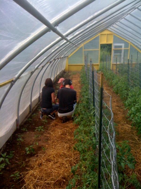 farmageddon production still 2
